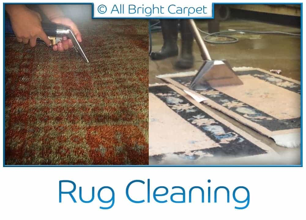 Area and Oriental Rug Cleaning - Spring Creek 11239