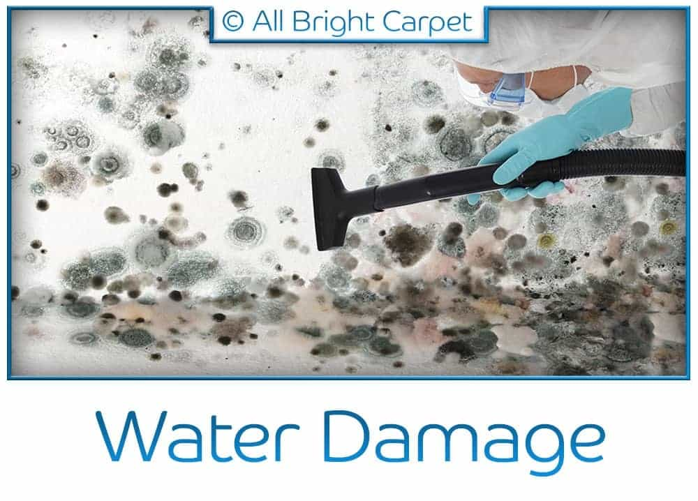 Water and Fire Damage Repair - Brooklyn