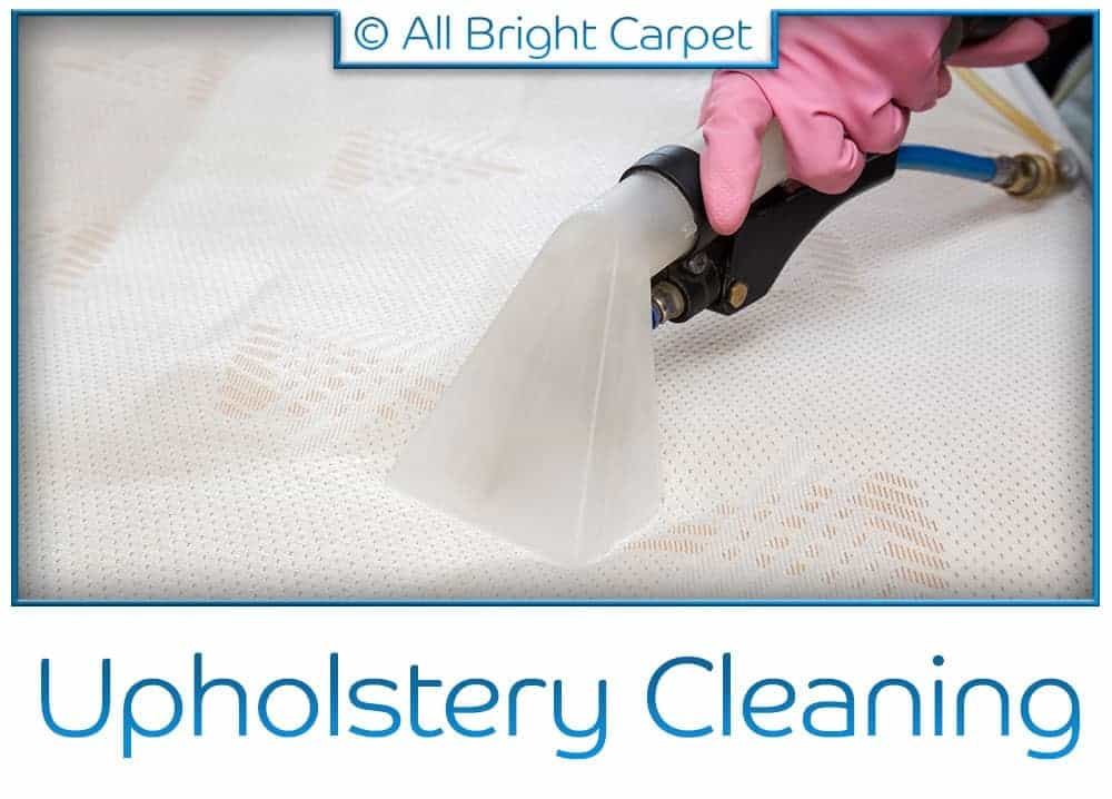 Upholstery Cleaning - Remsen Village 11236