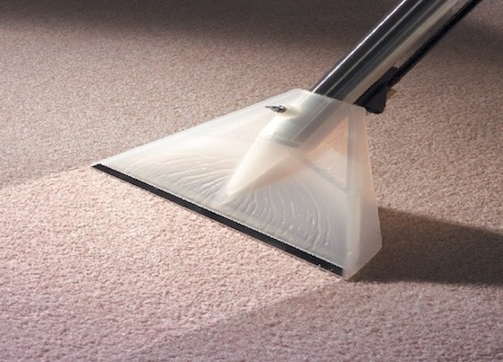 Carpet Cleaning - Bay Ridge 11209